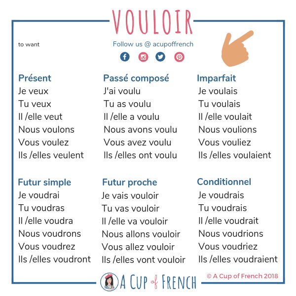 The verb vouloir in French