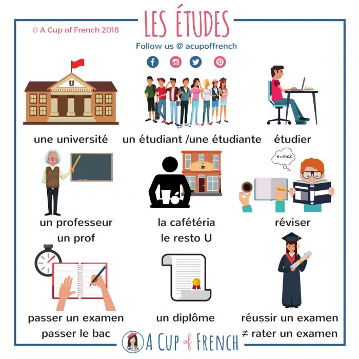 Parler des études en français