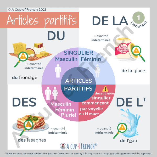 Partitive articles in French 1