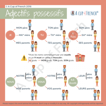 French possessive adjectives