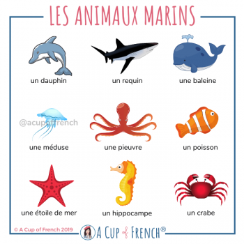 Animals in French - 1