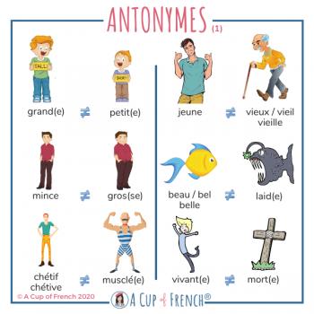 French antonyms 1