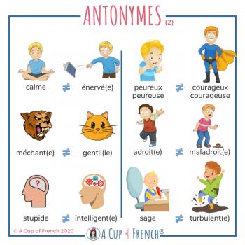 French antonyms 2