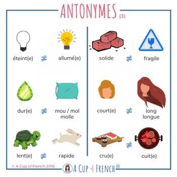 French antonyms 3