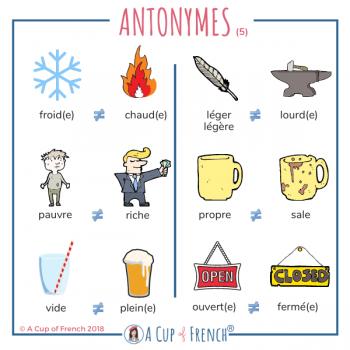 French antonyms 5