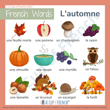 Autumn in French