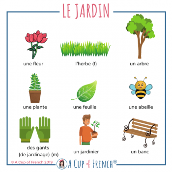 The garden - French words 1