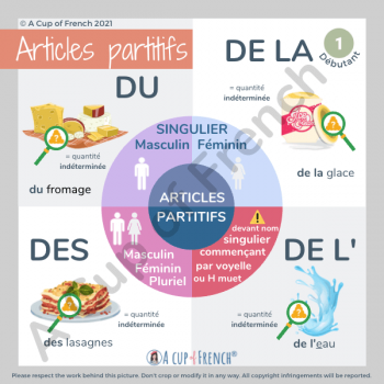 French partitive articles 1