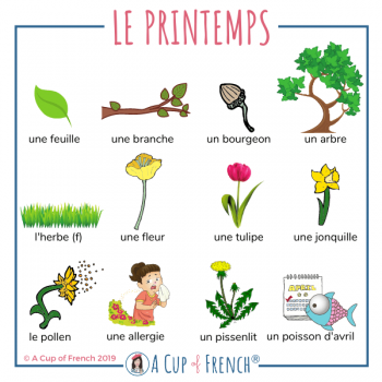 Spring French words 1