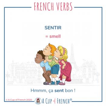 French verb - Sentir